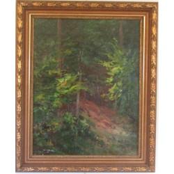 Sk797 – Obraz Lesní scenerie