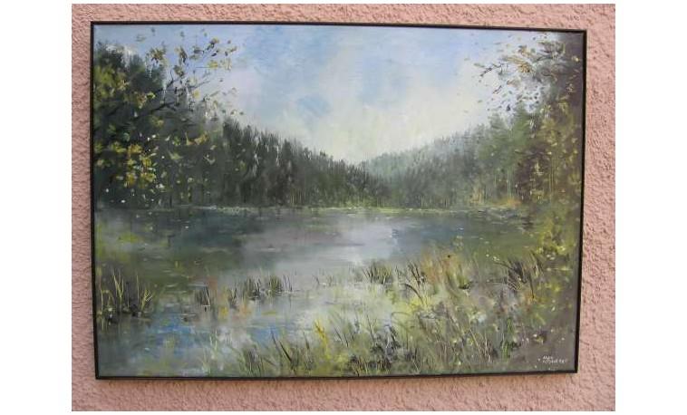 Sk398 – Šumava jezero Laka
