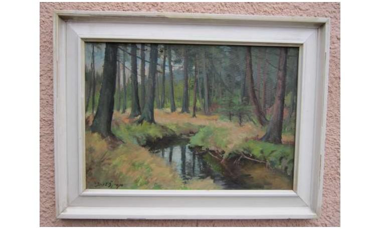 Sk434 – Obraz Pramen řeky Svratky